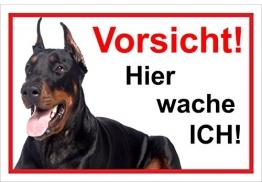 Melis Folienwerkstatt Schild Warnschild Vorsicht freilaufender Hund – Dobermann Achtung – Hier Wache ich – 20x30cm – S22E - 1