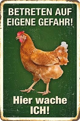 Betreten auf eigene Gefahr! Huhn Blechschild 20x30 cm PC 300/424 - 1