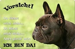 +++ Französische BULLDOGGE - Metall WARNSCHILD Schild Hundeschild Sign - FBD 16 T2 - 1