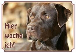 Hundeschild Labrador Retriever - wetterfestes Premiumschild aus Metall, DIN A4 - 1