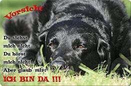 +++ LABRADOR Retriever - Metall WARNSCHILD Schild Hundeschild Sign - LAB 59 T2 S - 1