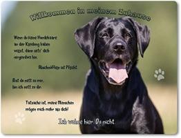 Merchandise for Fans Blechschild/Warnschild/Türschild - Aluminium - 20x30cm - - Willkommen in Meinem Zuhause - Motiv: Schwarzer Labrador Porträt - 13 - 1