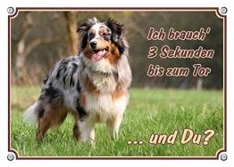 Petsigns Australian Shepherd Hundeschild - wetterfestes Metallschild, DIN A4 - 1