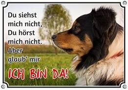 Petsigns Hundeschild Australian Shepherd - uv-beständiges Metallschild bis DIN A3, DIN A5 - 1