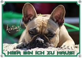 Petsigns Hundeschild - Französische Bulldogge - Exklusives 1,5mm Dickes Metallschild, DIN A5 - 1