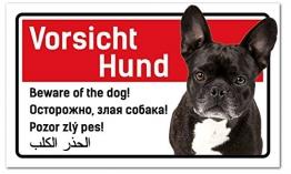 PrimeStick Vorsicht Hund Schild 5-sprachig 25x15cm Französische Bulldogge/Bully - 1