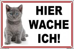 kleberio® - Hier wache ich! - Katzen Schild Kunststoff Warnschild Hinweisschild 20 x 30 cm mit Bohrlöchern - 1