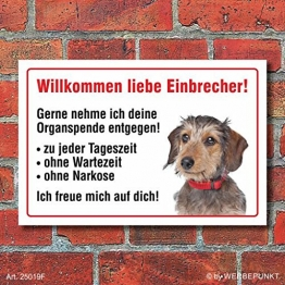 """Vorsicht """"Willkommen"""", Dackel, Hund, Schild, Hinweis, 3 mm Alu-Verbund Motiv 2 300 x 200 mm - 1"""